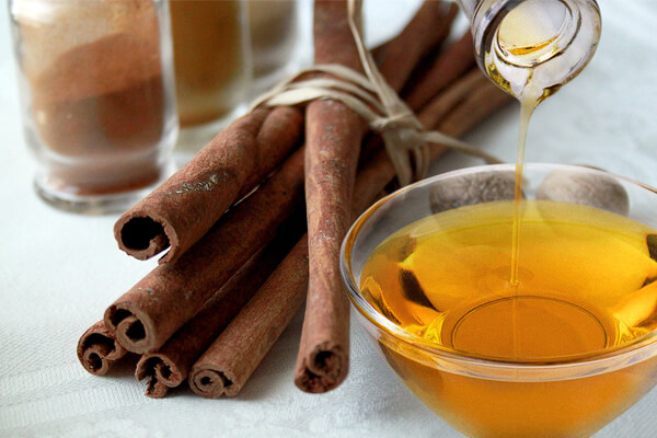 Cinnamon sticks and essential oil