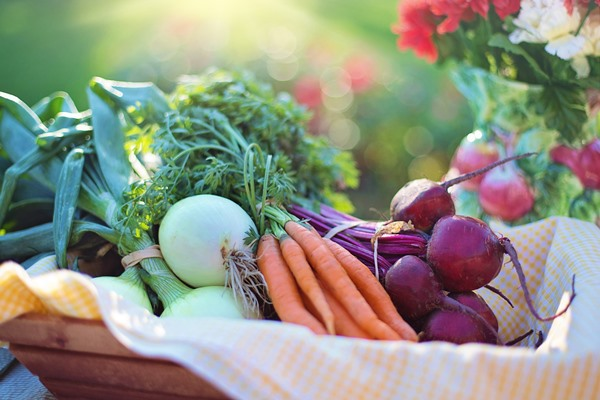 Nutritious root crops